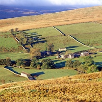 Farm in Yorkshire Dales
