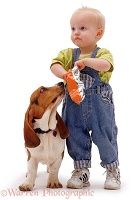Boy with Basset Hound