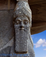 Stone head from king Assur Nassirpal's palace