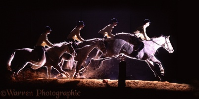 Multiple image of Welsh Pony jumping