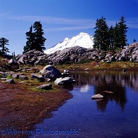 Mt. Baker and pond