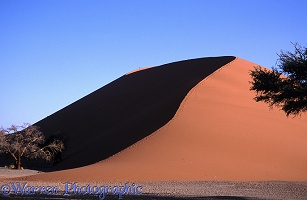 Dune climbing in the Namib Desert