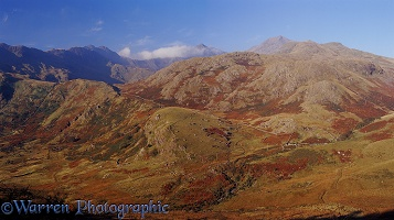 Panoramic view of Mt. Snowdon