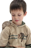 Boy with a gerbil on his shoulder