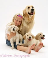 Girl with Golden Retriever and pups