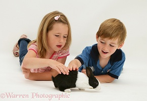 Children with a young Dutch rabbit