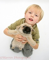 Child holding up Pugzu (Pug x Shih-Tzu) pup