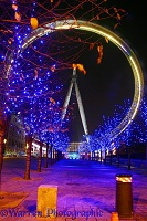 The Millennium Wheel at night