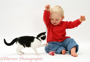 Toddler playing with kitten