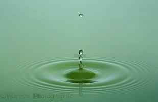 Water drop forming a spike