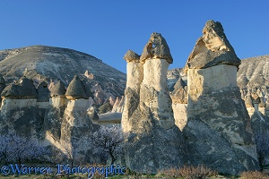 Blossom and fairy chimneys