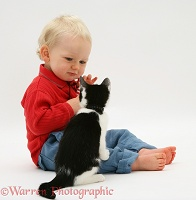 Toddler with Black-and-white kitten