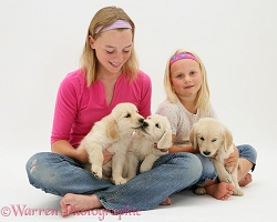 Girls with Golden Retriever pups