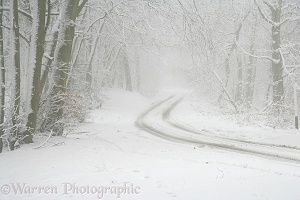 Snowy road with misty atmosphere