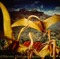 Giant Pterosaurs feeding on Triceratops carcass
