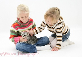 Girls with silver tabby kitten