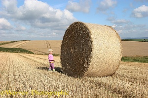 Little girl with roly-poly bale