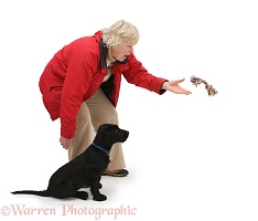 Lady throwing a toy for a puppy