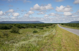 Road to waterberg
