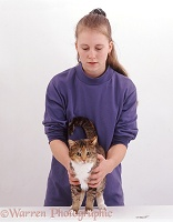 Veterinary nurse feeling tortoiseshell cat for injury