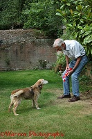 Man playing with an older dog