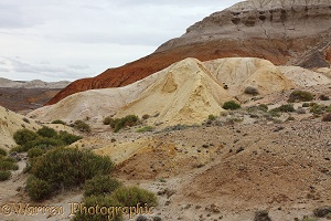 Colourful arid hills