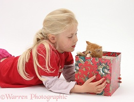 Girl with ginger kitten in a box
