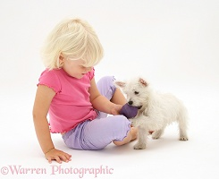 Girl and Westie pup