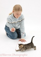 Girl playing with a tabby kitten