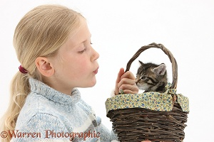 Girl with a cute tabby kitten in a basket