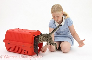 Girl encouraging a kitten into a cat carrier