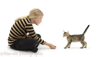 Girl beckoning a tabby kitten