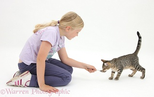 Girl feeding tabby kitten with a spoon
