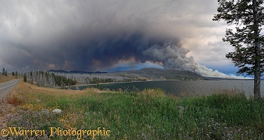 Lake and forest fire panorama
