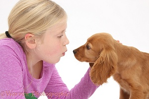 Girl face-to-face with Cocker Spaniel puppy