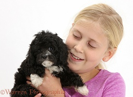 Girl cuddling black Cavapoo puppy
