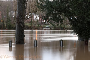 River Wey flooding Guildford