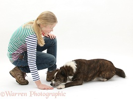 Girl training a dog to down position