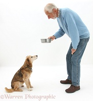 Giving a dog a treat