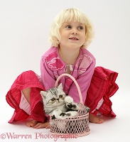 Little girl with silver Exotic cat in a basket