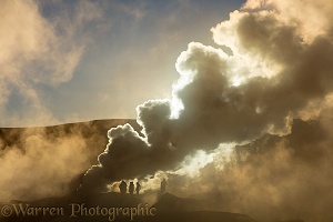 Steam rising from geysers, Sol de Manana, Bolivia
