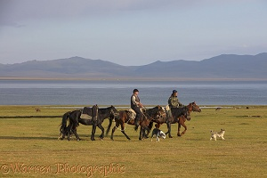 Horse riders and dogs by Song Kul Lake, Kyrgyzstan