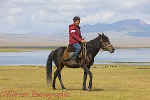 Horseman by Song Kul Lake, Kyrgyzstan