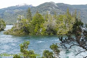 Small island in river, Los Alerces National Park, Argentina