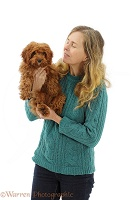 Woman holding red Cavapoo puppy