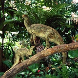 Hypsilophodon up tree R