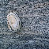 Stripy pebble on rock