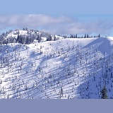 Snow at Manning Park ski area