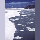 Fraser River with ice