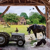 Barn inside jigsaw